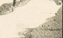Enlarged bottom right corner of the initial letter, showing the cross-screen lines and dots creating tonal gradations in the halftone engraving.