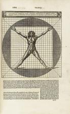 Vitruvius's sketches on human proportions