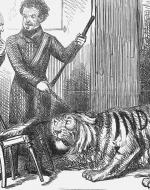 Two brits scolding a cowering tiger with the word Inda printed it.