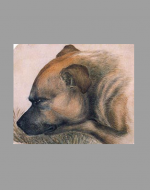 Colored painting of Keeper by Emily Brontë ca. 1838