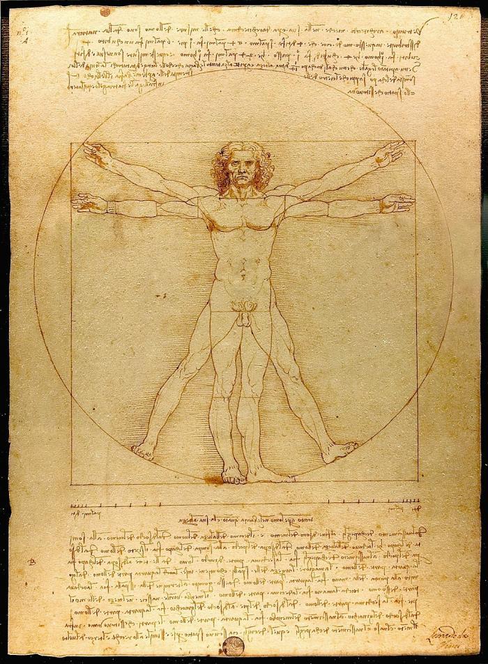A drawing of da Vinci's Vitruvian Man