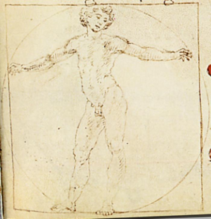 Francesco di Giorgio's sketch of Vitruvian Man features a semi-turned male figure enclosed within a perfect circle centered around the genitals.